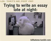 writing bunny